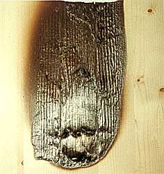 BBT Brandschutz Holz
