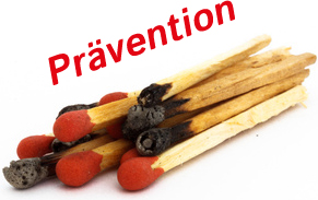 BBT Bio Brandschutz - Brandschutzmittel, Präventiver Brandschutz, Antiflame